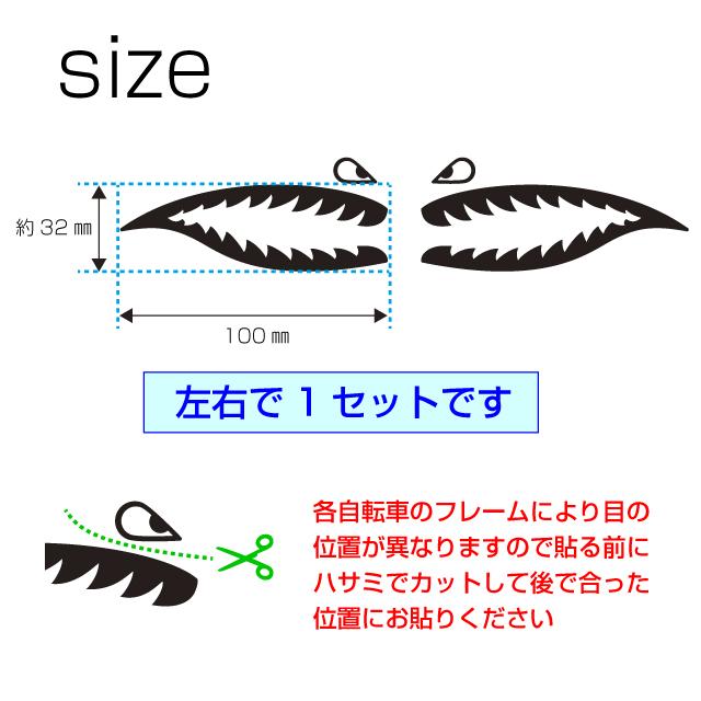 shark1サイズ&カット