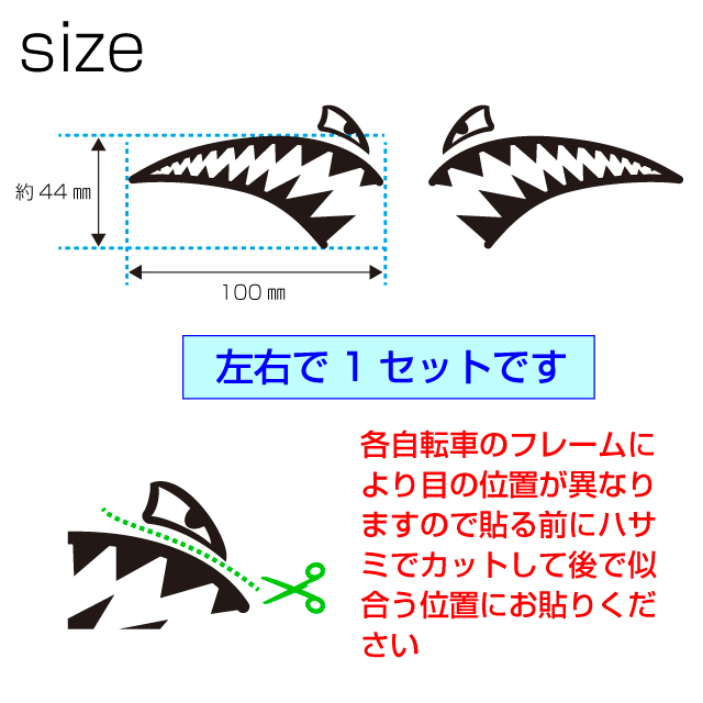 shark2サイズ&カット